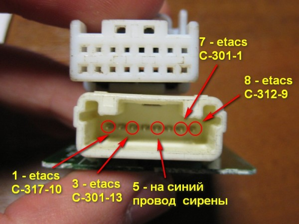 IMG_5690 - wiring